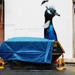 عکاسی خیابانی در عصر اینستاگرام - عکس از مت استوارت