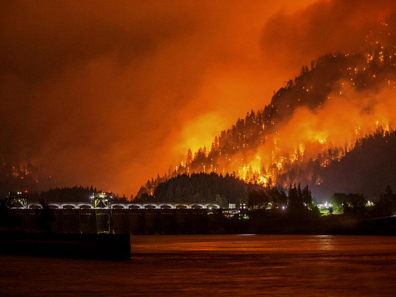 عکس روز: آتش سوزی قرن