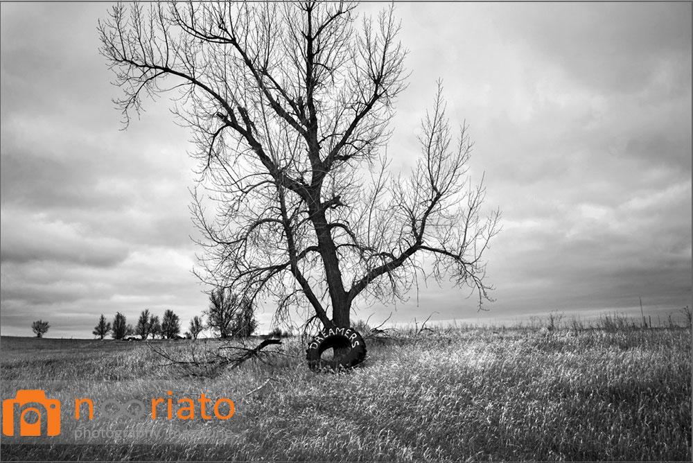 دارسی پادیلا مجله عکس نوریاتو