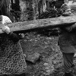 جیندریچ استرایت مجله عکس نوریاتو