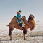لی وی مغولستان مجله عکس نوریاتو