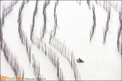 تیوگو چنگ مجله عکس نوریاتو