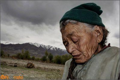 فلیپه فتیپالدی مجله عکس نوریاتو