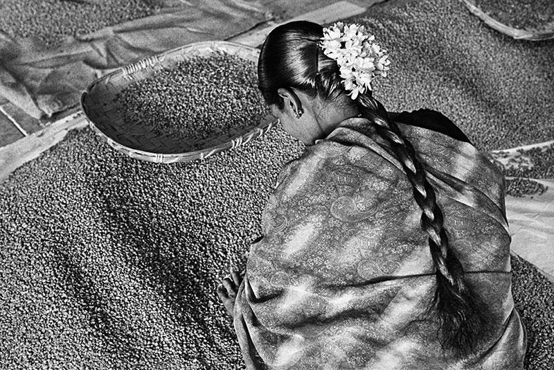 سباستیائو سالگادو کارگران قهوه مجله نوریاتو