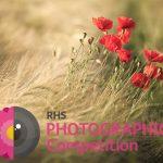 فراخوان مسابقه عکاسی RHS مجله نوریاتو