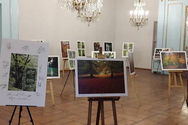 گشایش نمایشگاه «هیرکانی سبز ازلی» در کاخ نیاوران