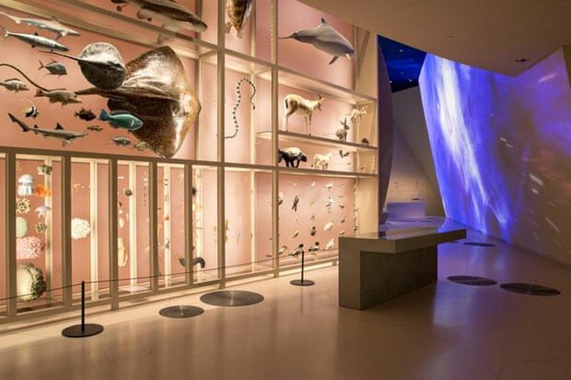 افتتاح موزه ملی قطر