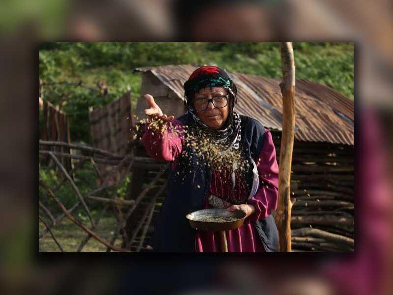 راهیابی فیلم سینمایی دوچ به جشنواره فیلم زلین