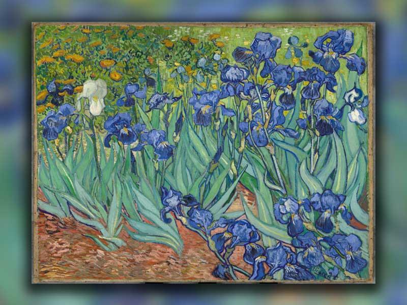 گلهای زنبق در نقاشیهای ون گوگ