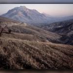 کردستان: یک آلبوم خانوادگی