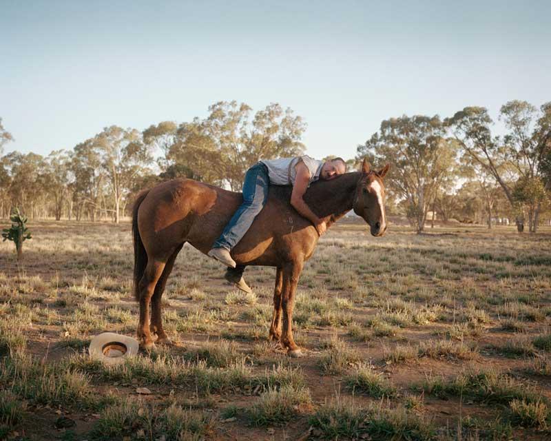 حیوانات استرالیا